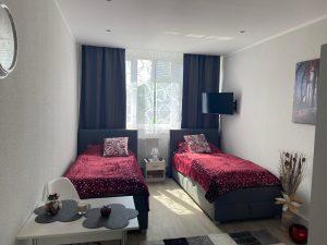 Apartment-Wien-1